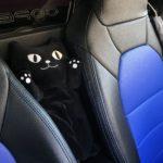 【車用ティッシュケース】オシャレで可愛い黒猫ネコマンジュウ!